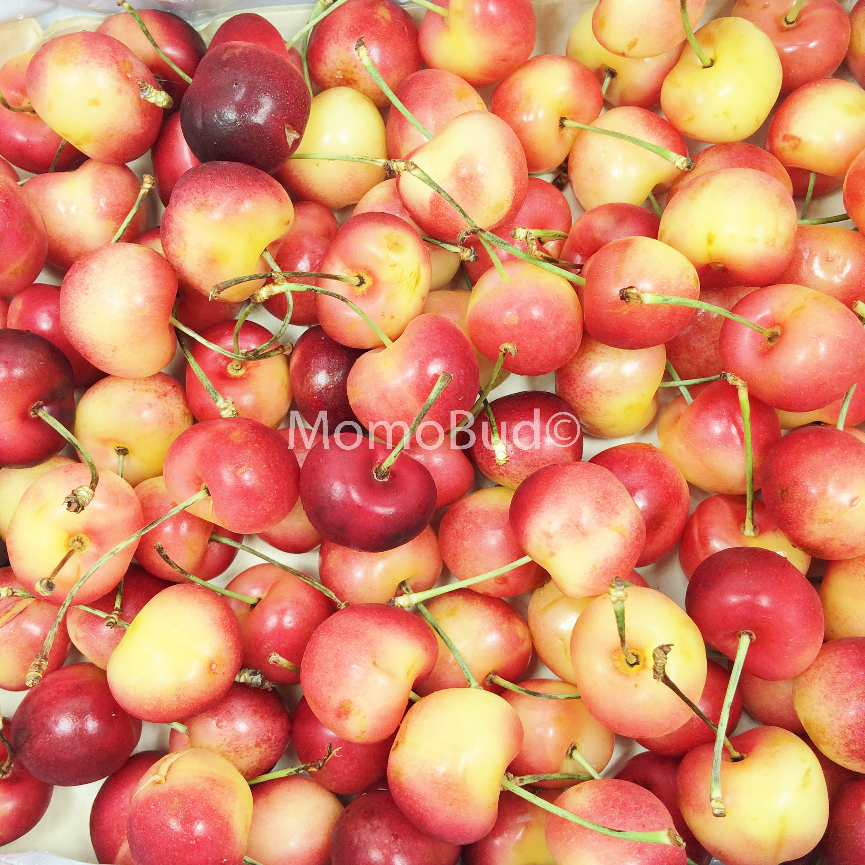New cherry