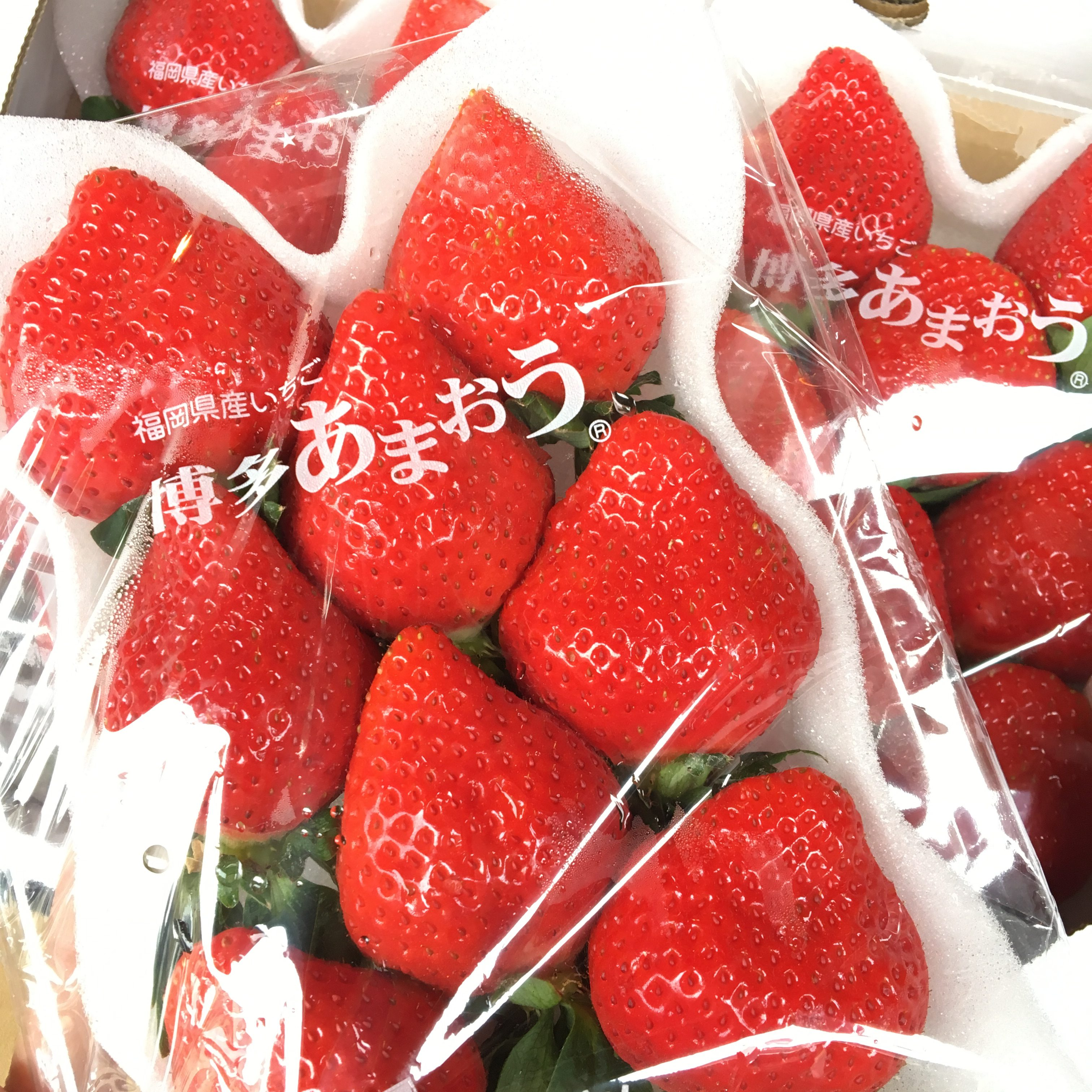 Japanese Fruit Cake Origin
