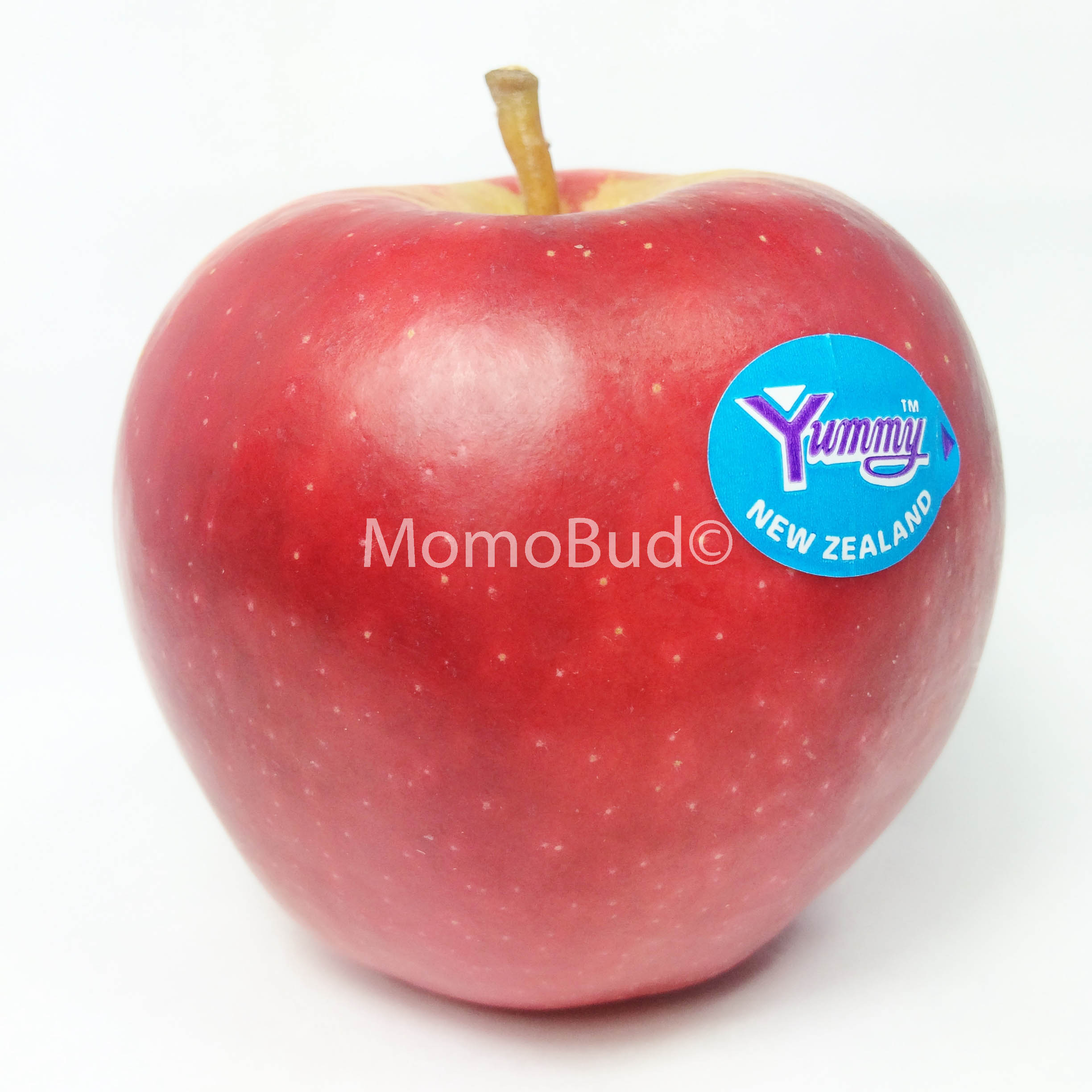 Early Queen Apple (Small, 7pcs)