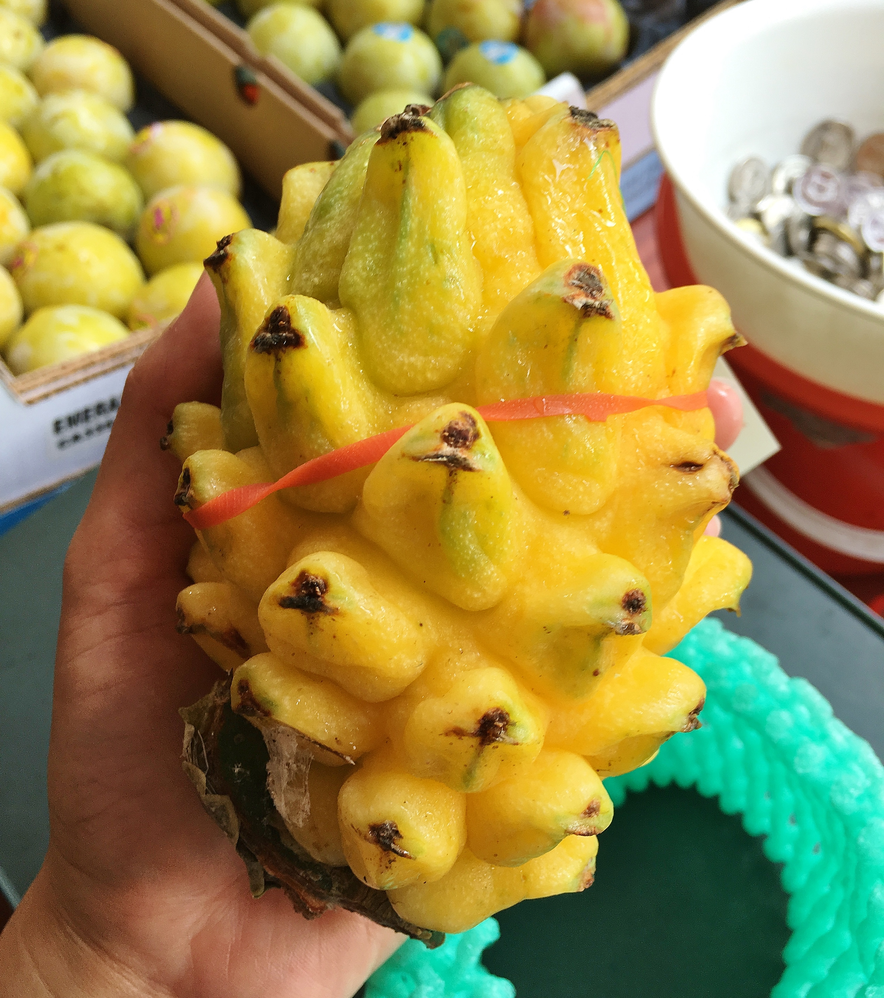 Pitahaya Yellow Dragonfruit Box 2 5kg Momobud