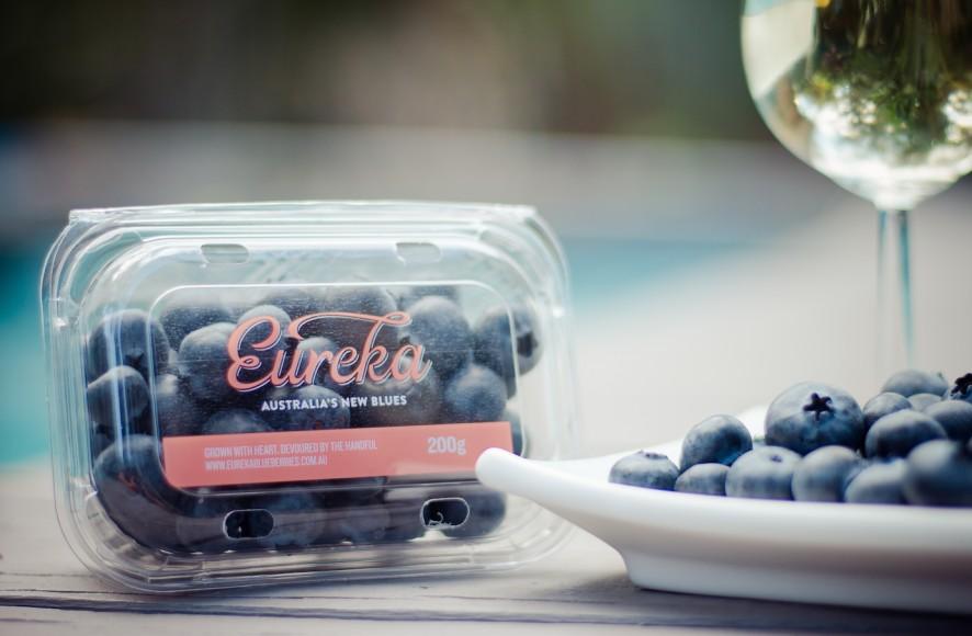 Eureka Sweet Blueberry Momobud